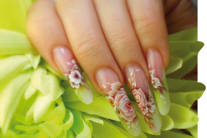 Herbaciane róże - Marina Shyvtsova