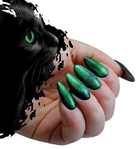 Cat Eye Effect Agnieszka Szatkowska Paznokcie 99-min